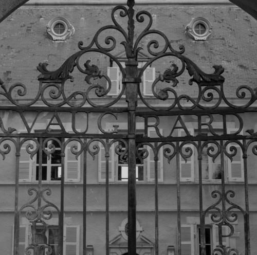 Château de Vaugirard, Champdieu (Loire). Détail de la grille du portail